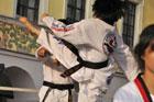 Koreańska Grupa Taekwondo