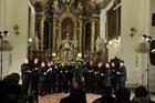 Trzy koncerty ku czci �w. Cecylii:
